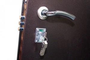 Двери с антивандальным покрытием