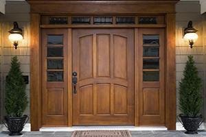 Дорогие металлические двери
